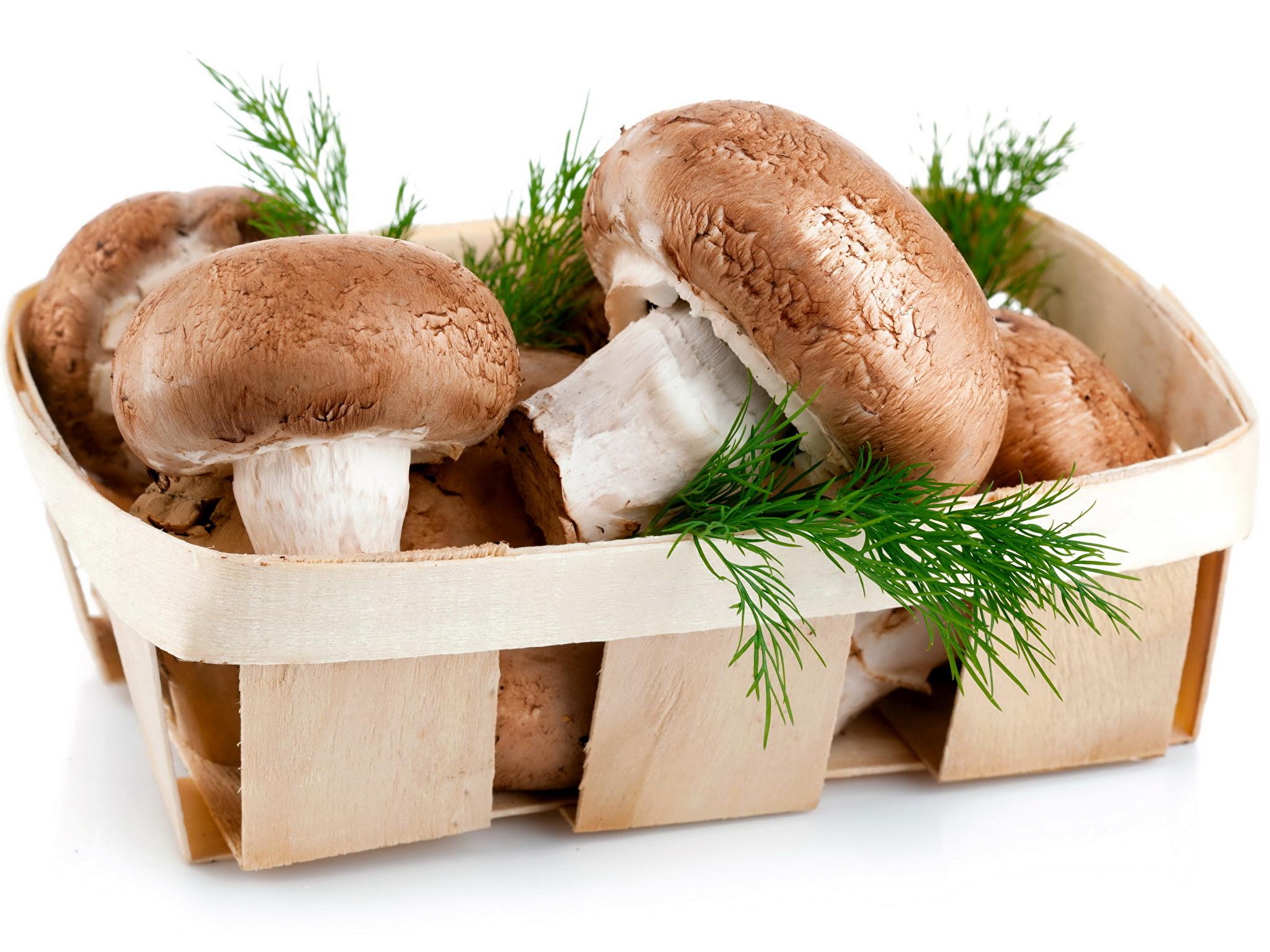 можно ли мариновать замороженные грибы