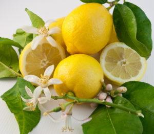 Мед с лимоном при беременности при простуде thumbnail