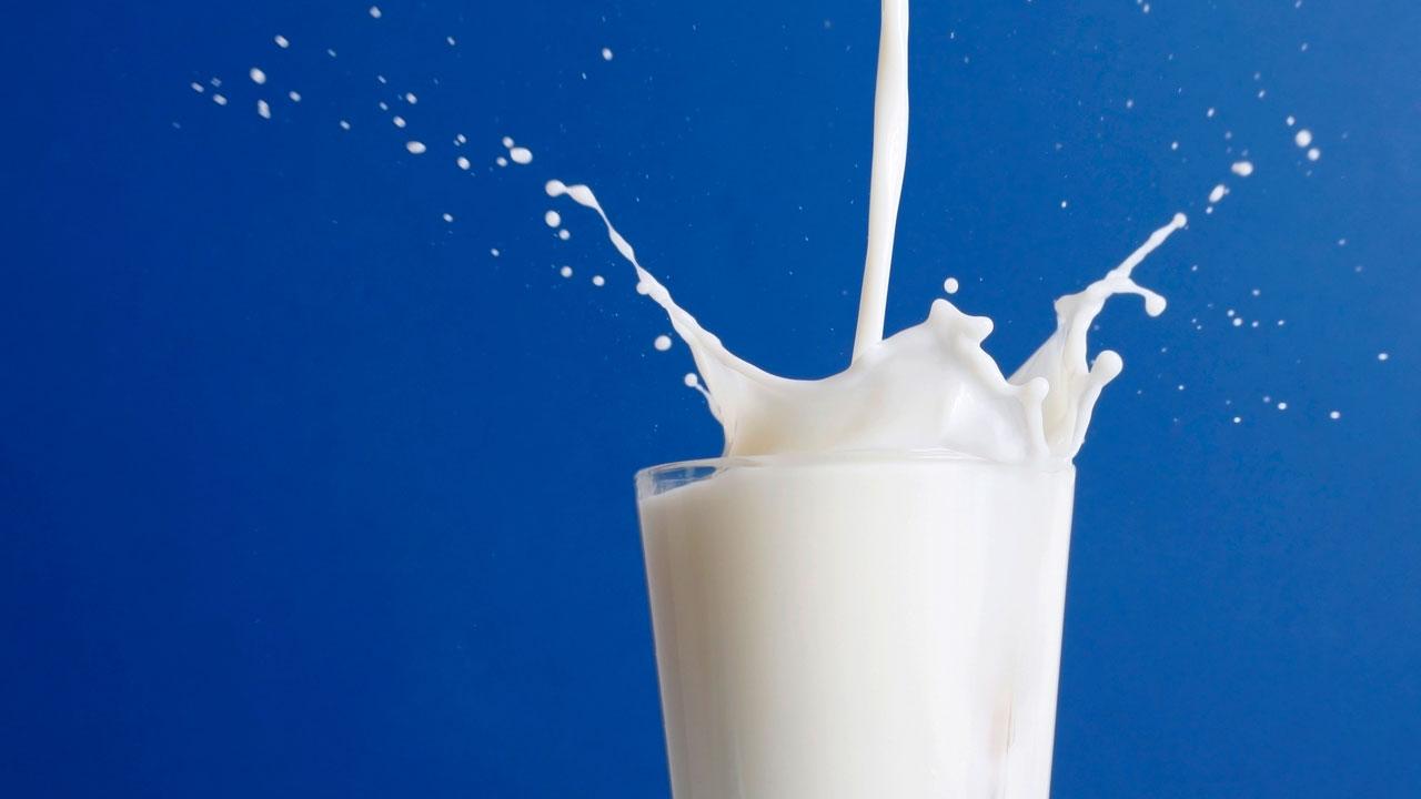 молоко беременным